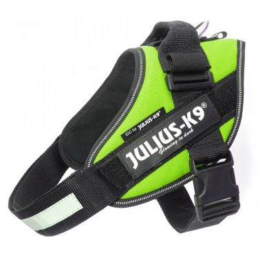 Julius-K9 Size 1