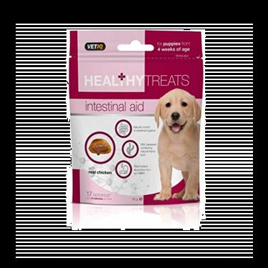 Vetiq Healthy Intestinal Aid για Κουτάβια 50gr