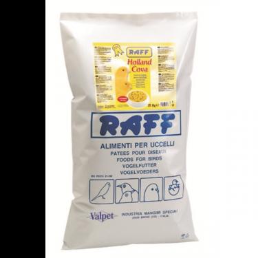 Aυγοτροφή Hοlland Cova RAFF