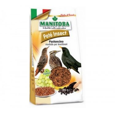 Manitoba Pate Insect