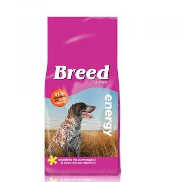Breed Line Dog Energy