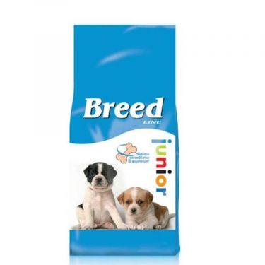 Breed Line Dog Junior