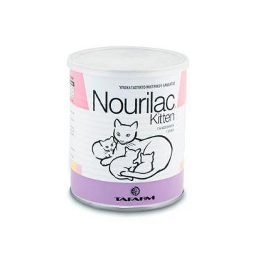 Nourilac Kitten