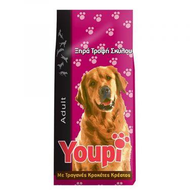 Youpi Adult Dog
